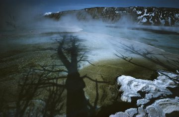 Yellowstone, USA 1966