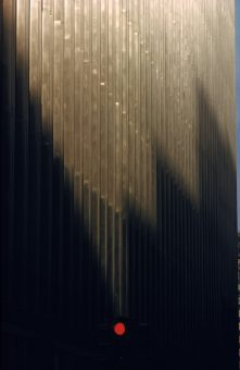 NY 1955