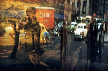 Reflection—42nd Street, NY 1952