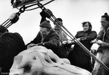 Gregory Peck, Moby Dick, 1956